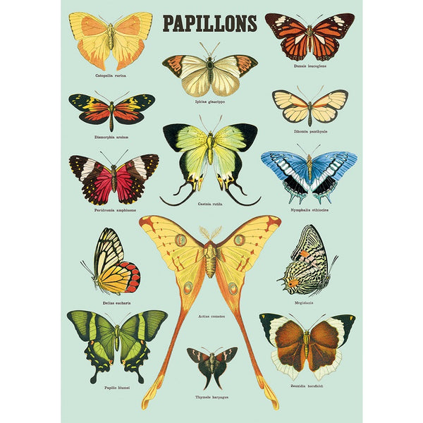 vintage-style poster - papillons