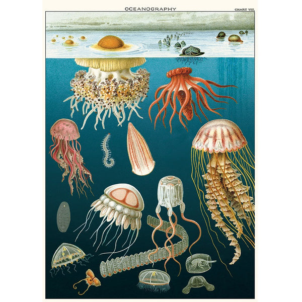 vintage-style poster - jellyfish