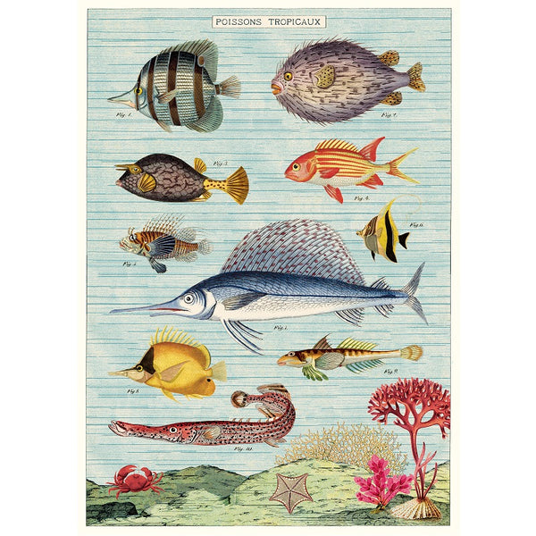 vintage-style poster - tropical fish
