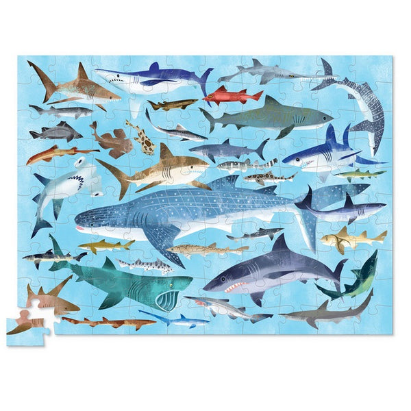 thirty six sharks puzzle - 100 piece