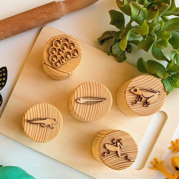 frog life cycle wooden play dough stamps