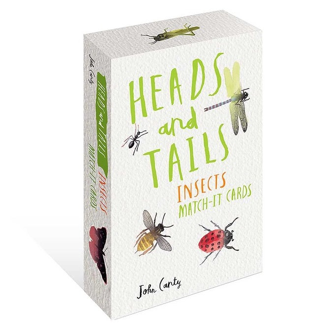 heads and tails insect match-it cards