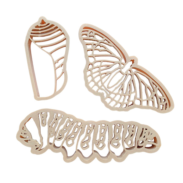 butterfly life cycle dough cutters - set of 3