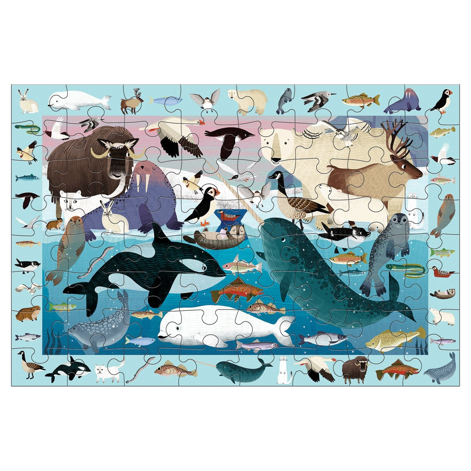 arctic life, search and find puzzle - 64 piece