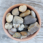 1 Lb Brown pebbles River Rock Cactus and Succulent Top Soil Dressing
