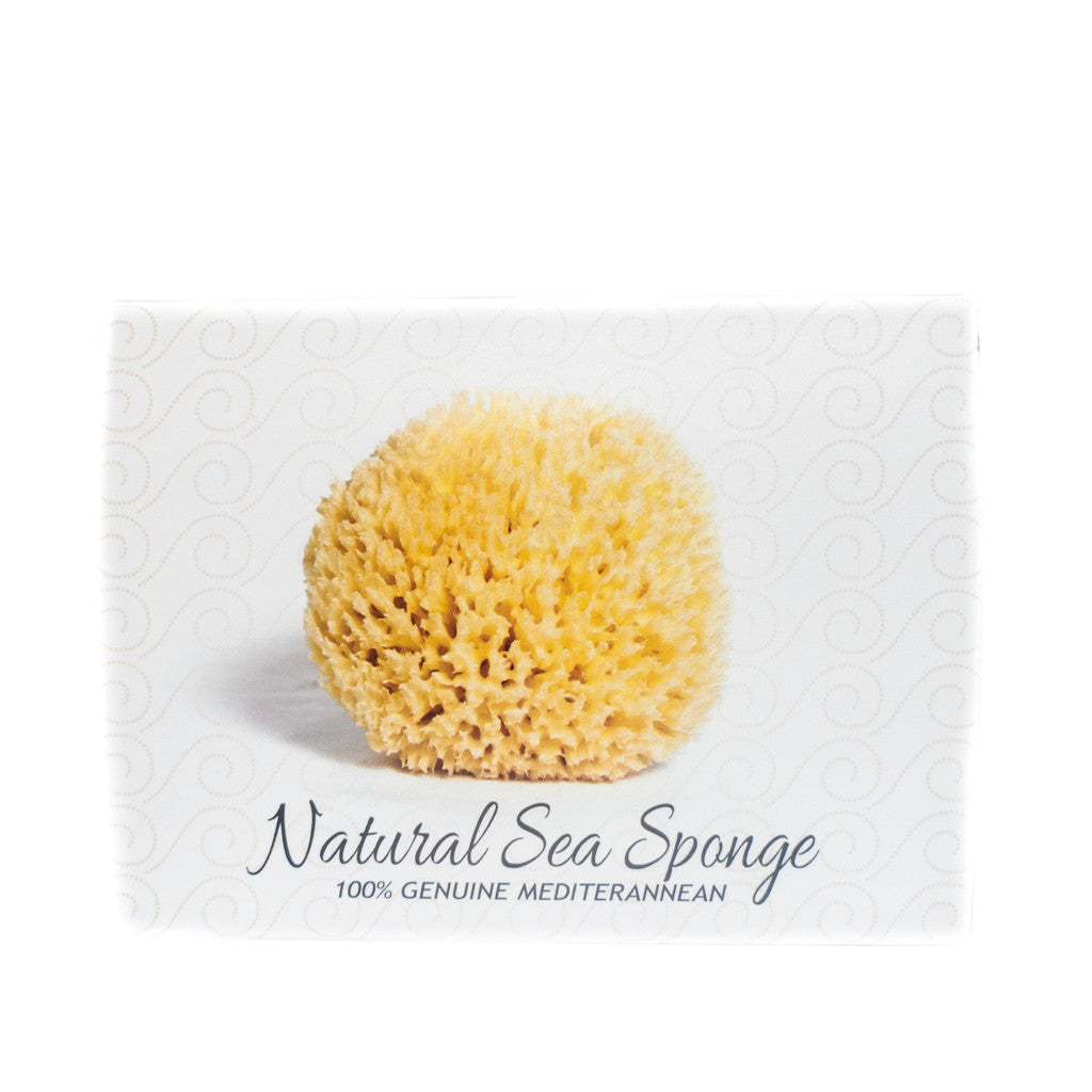 Soap and Sponge gift pack