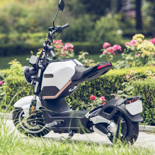 scooter electrique sunra miku max campagne