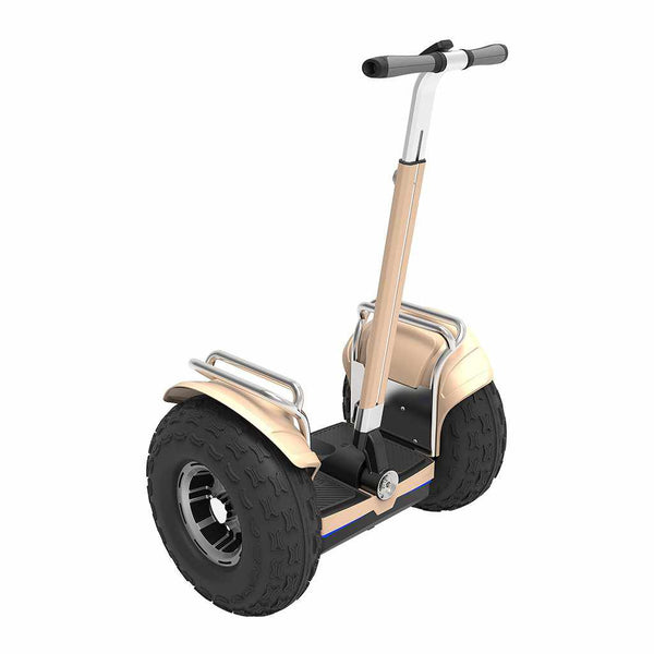 gyropode tout terrain echo gold segway 4x4 roue 19 pouces weebot. Black Bedroom Furniture Sets. Home Design Ideas