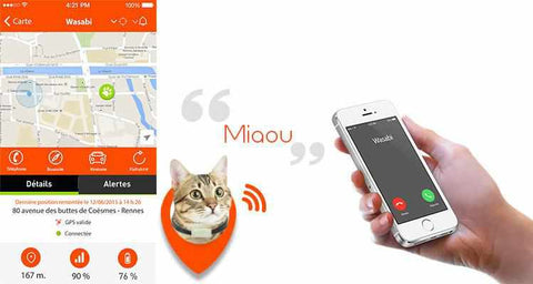 weenect cats, weenect, puce GPS, tracker GPS, balise GPS pour chats, collier GPS pour animaux, weebot, boutique france