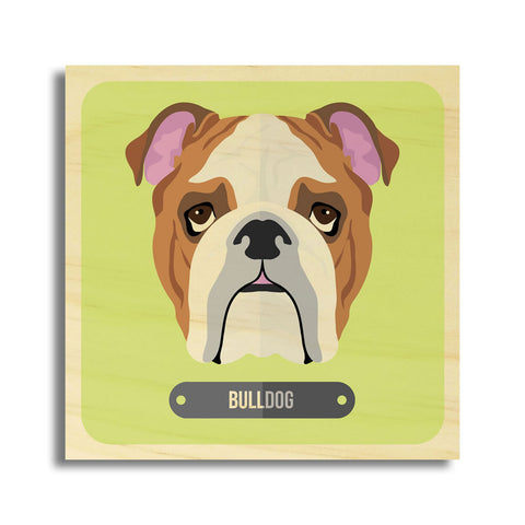 Bulldog Dog