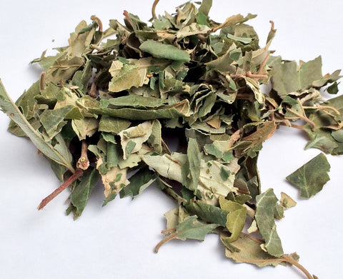 Sidr Leaves (Hand picked & dried) - 50g Pack