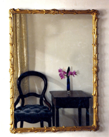 "Acanthus Leaf Finished Frame with Beveled Mirror 28"" x 38"""
