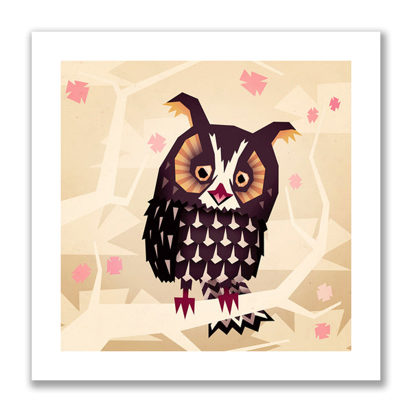 """Canadian Long Eared Owl"" Print"