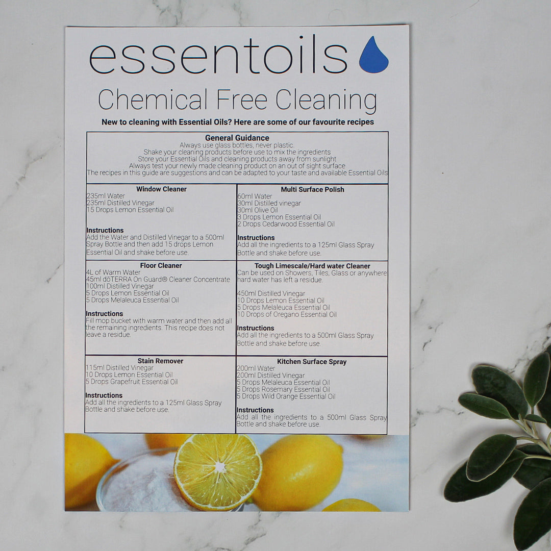 Cleaning Guide (Single Sheet)