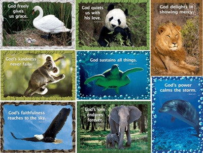 8 Posters- God Our Creator