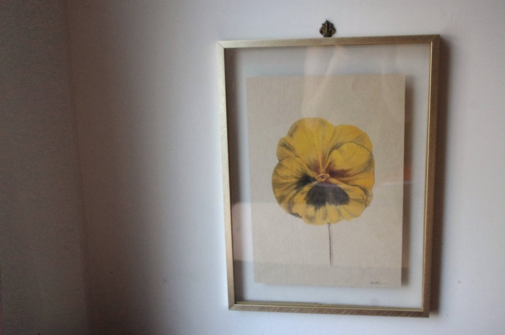 Aware Pansy Print on Hemp Paper