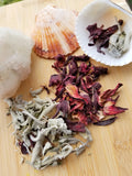 White sage + hibiscus, seashell kit