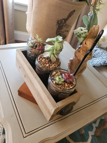 !!! Farmhouse Succulent Boxes