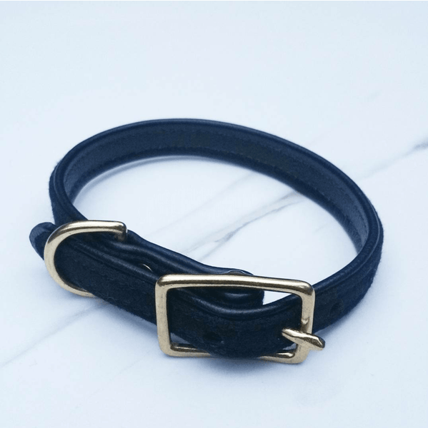 MH dog collar - Black on Black - MisterHound