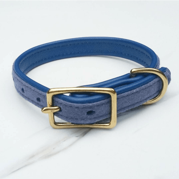 MH dog collar - Cobalt Blue - MisterHound