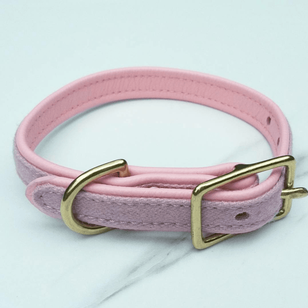 MH dog collar - Flamingo pink - MisterHound