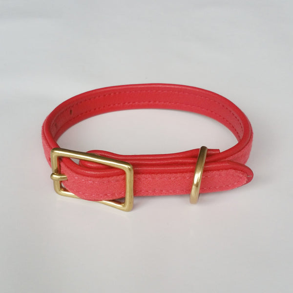 MH dog collar -Watermelon Red - MisterHound  - 1