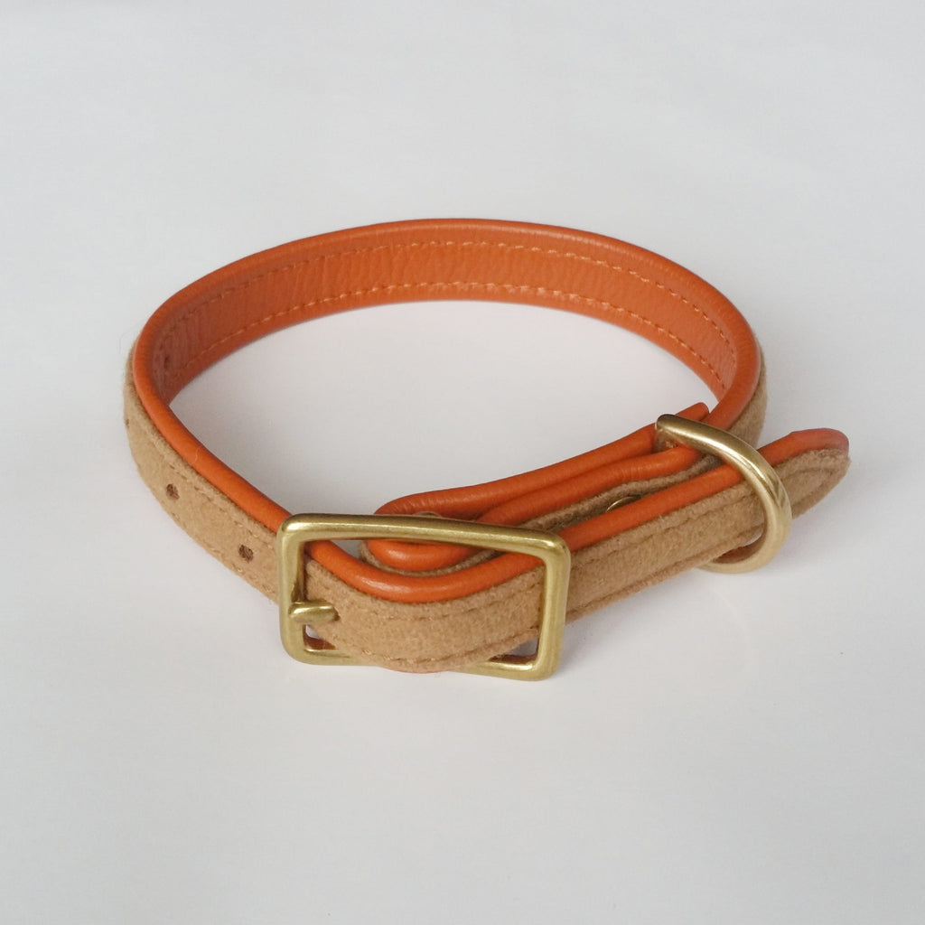 MH dog collar - Royal Oak and Tan - MisterHound  - 1