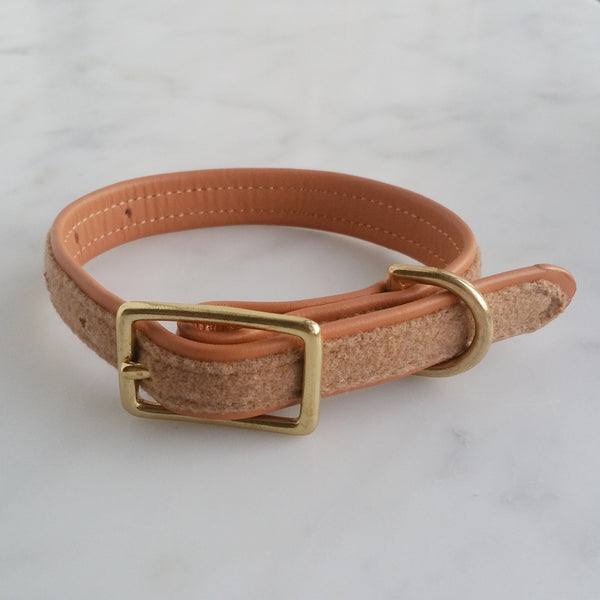 MH dog collar - Tan 2.0