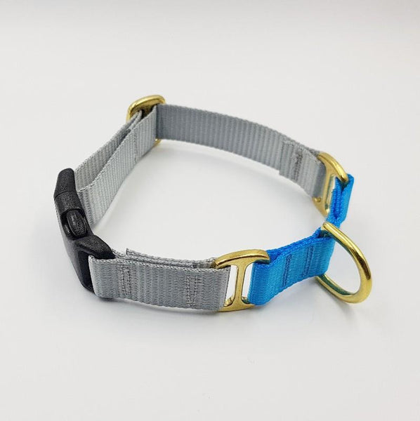 Oh Snap! dog collar - Grey / Aqua