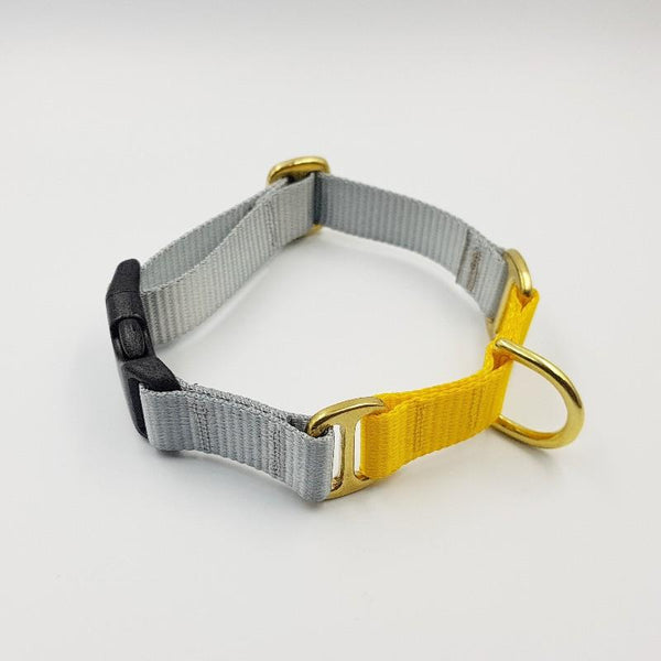 Oh Snap! dog collar - Grey / Yellow