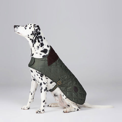 Barbour - Quilted Dog Coat in Olive - Dog Coat - Sinclairs Online - 2