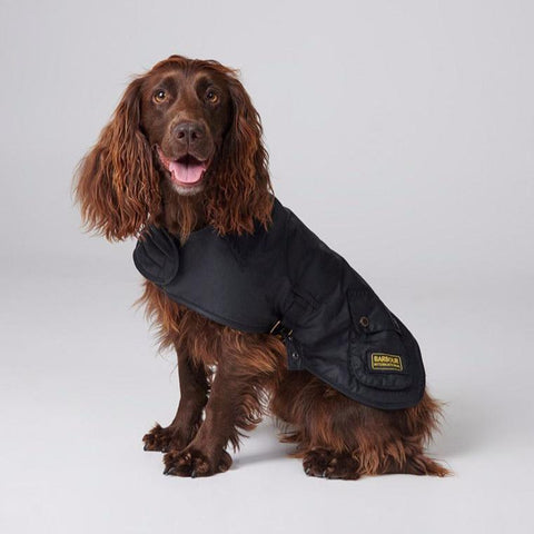 Barbour - International Dog Coat in Black