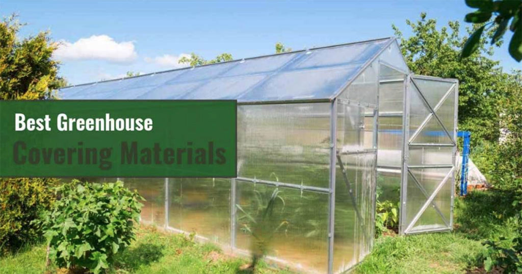 Best Greenhouse Covering Materials for DIY Greenhouses
