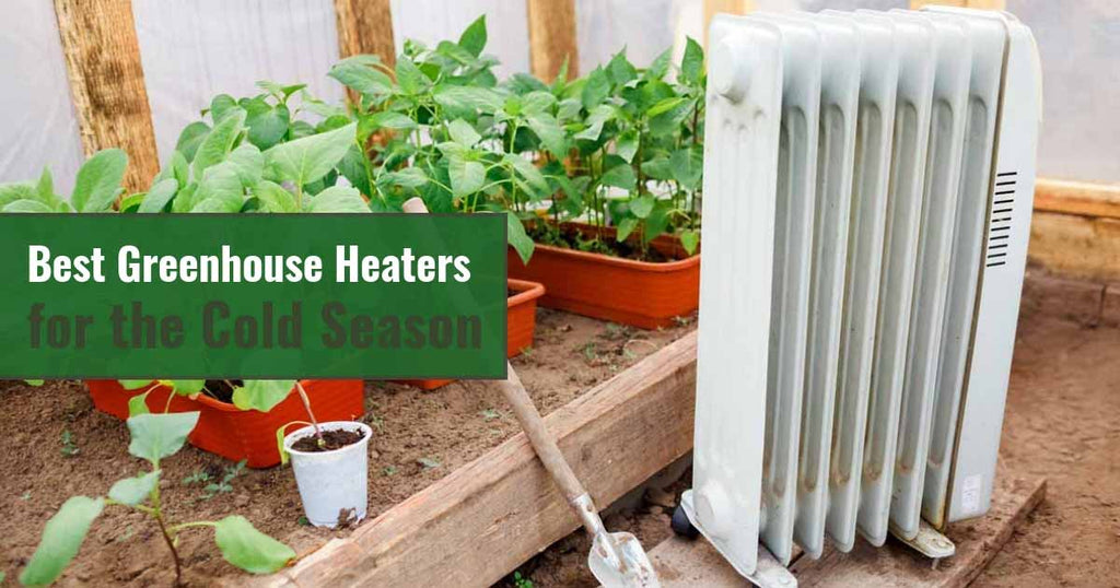 Best Greenhouse Heaters for the Cold Season
