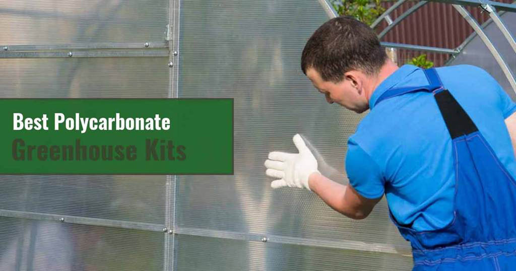 Best Polycarbonate Greenhouse Kits
