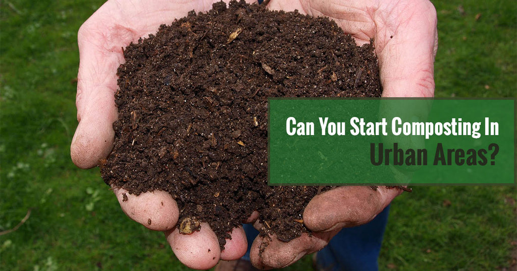 Can You Start Composting in Urban Areas?