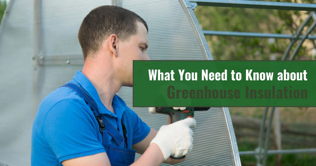 What You Need to Know about Greenhouse Insulation