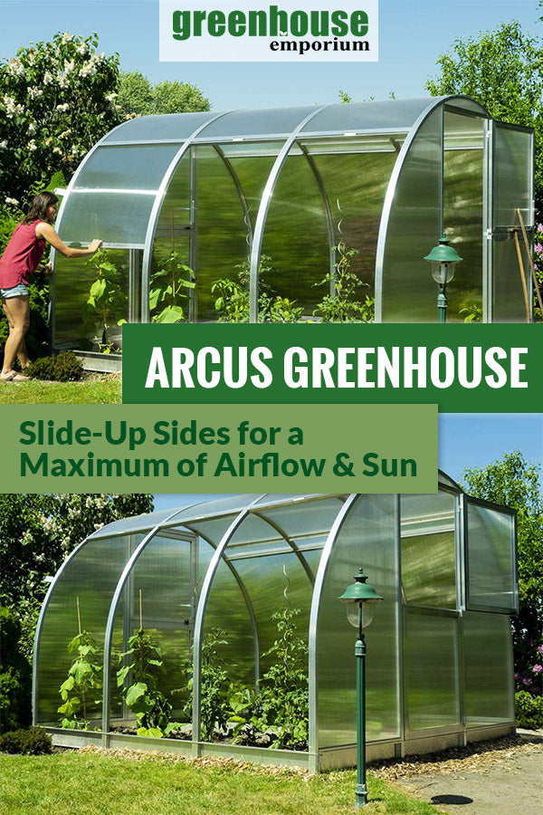 Arcus greenhouse above shows fully open doors and opened side panels for better ventilation while the image below shows the Arcus greenhouse with only the upper door open and fully opened side panels with the text saying Arcus Greenhouse Slide-up sides for a Maximum of Airflow & Sun.