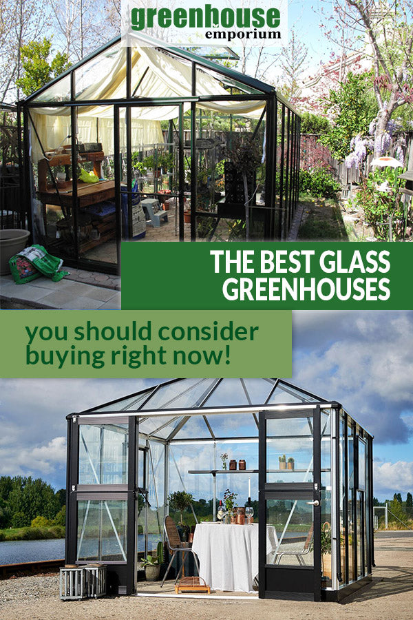 Two glass greenhouses with the text: The Best Glass Greenhouses - You should consider buying right now