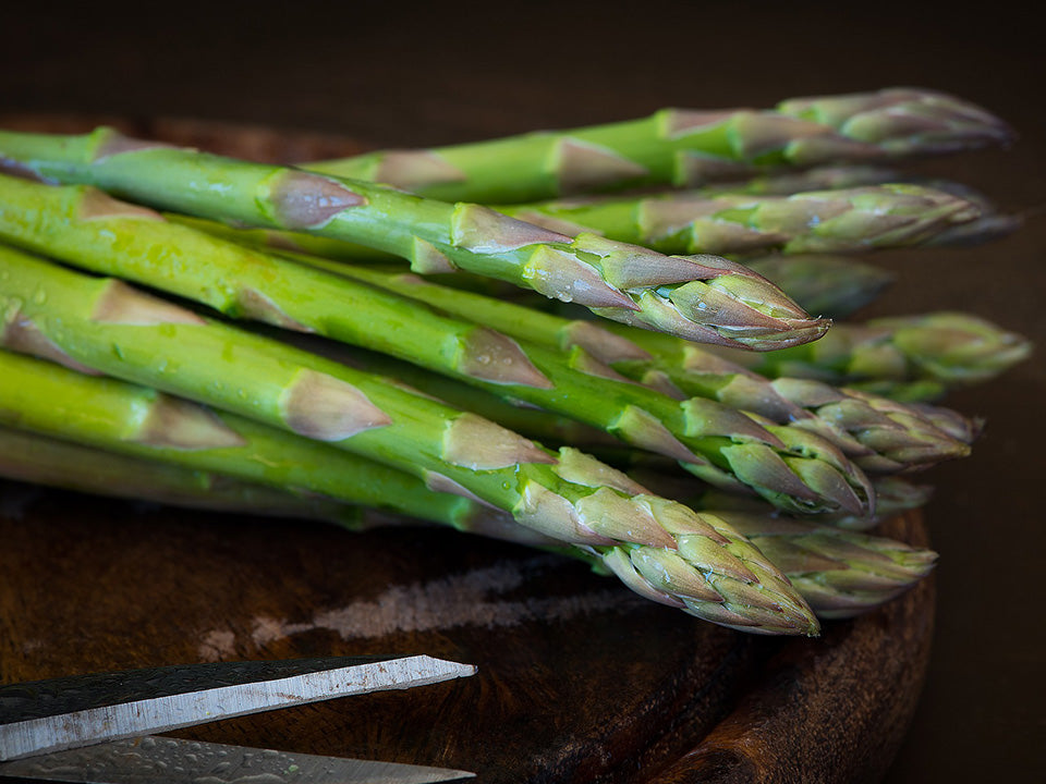 A bunch of asparagus with a scissor below