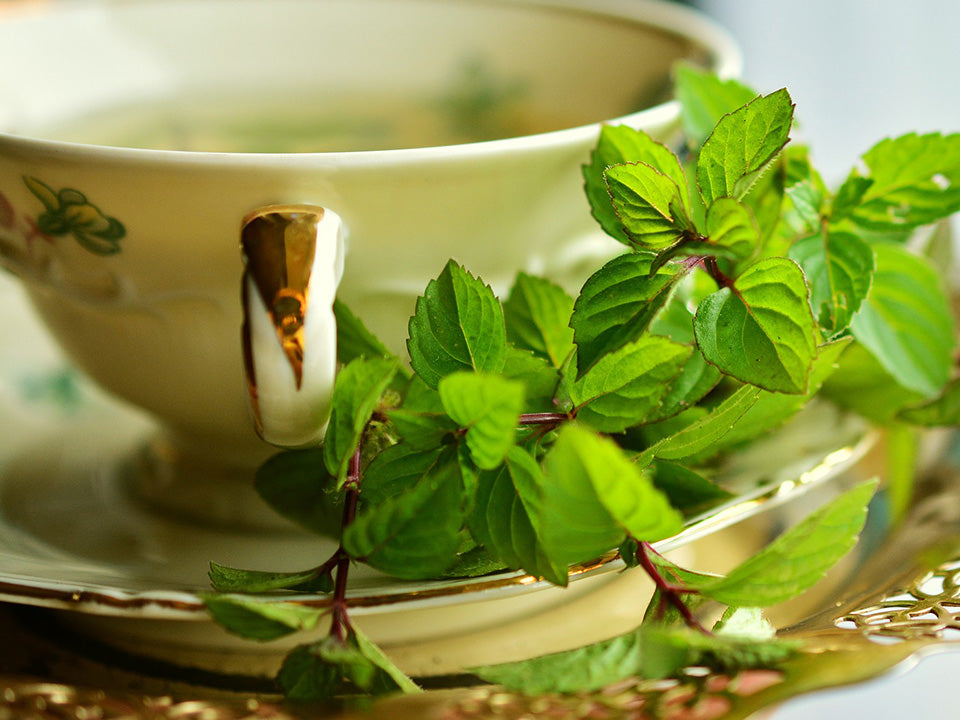 A mint tea with mint leaves