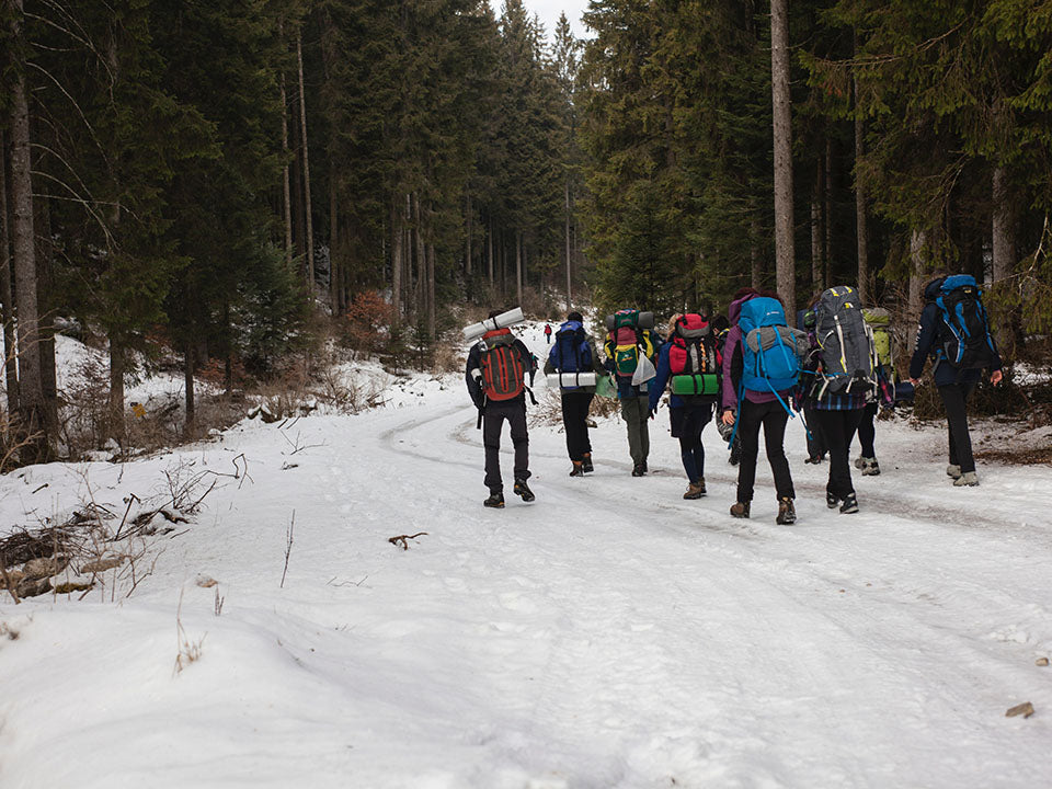 Hikers in winter with big backpacks