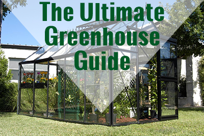 Glass Greenhouse with text: The Ultimate Greenhouse Guide
