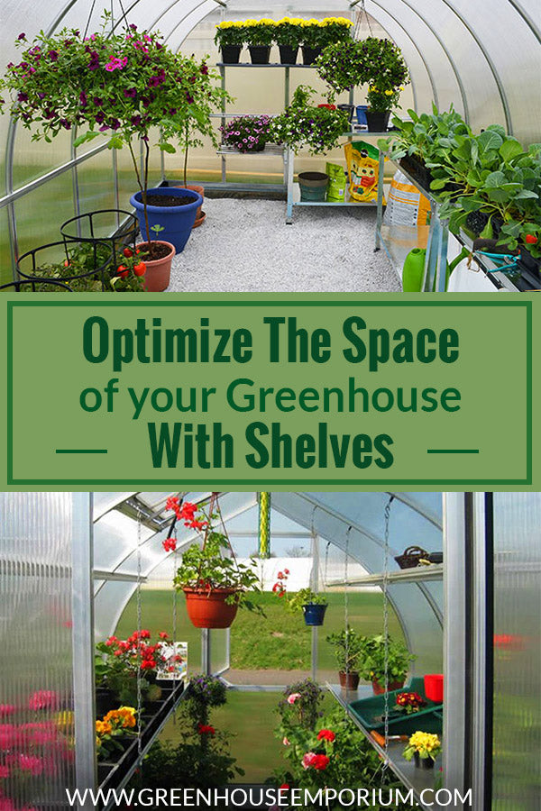 Interiors of two greenhouses with shelves and plants with the text: Optimize the space of your greenhouse with shelves