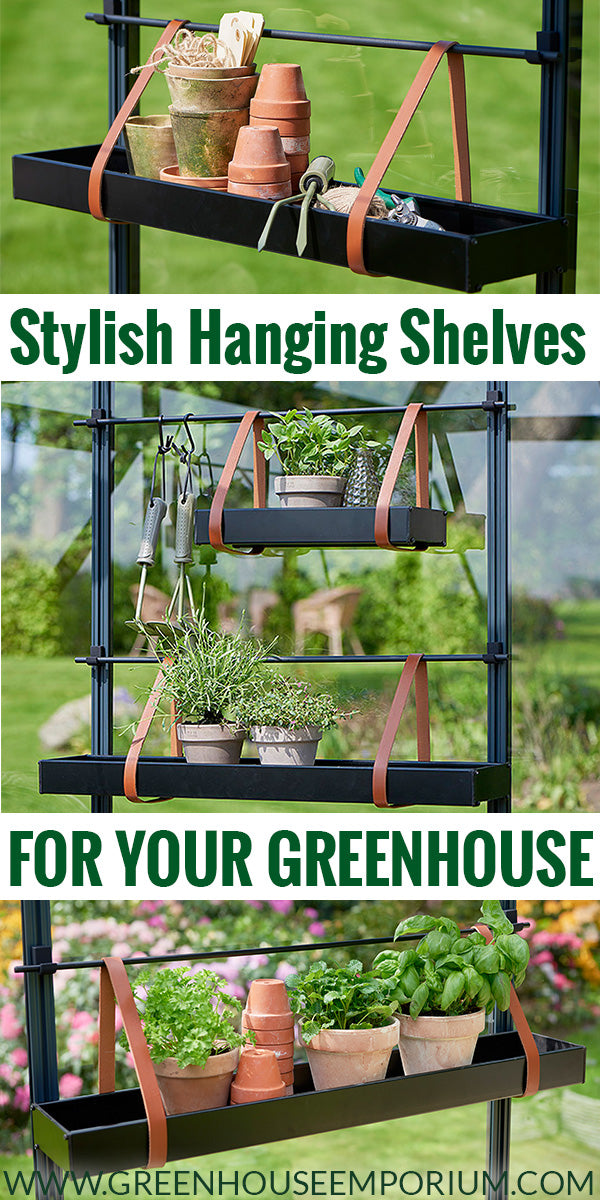 Hanging shelves in a greenhouse with leather straps with the text: Stylish Hanging Shelves for your greenhouse
