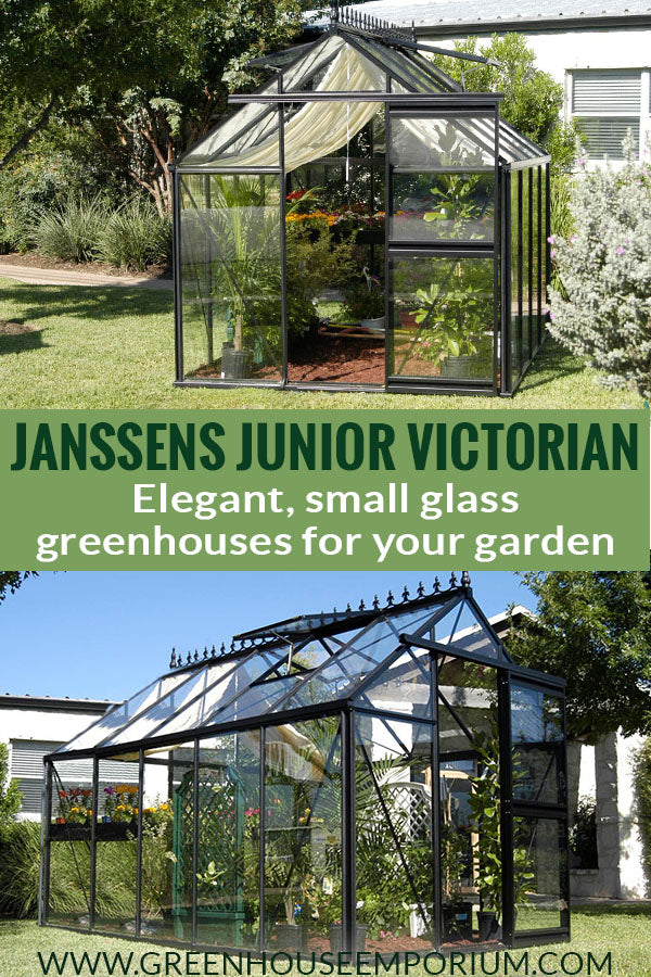 Two medium-sized glass greenhouses with a black frame and the text in middle: Janssens Junior Victorian - Elegant, small glass greenhouses for your garden