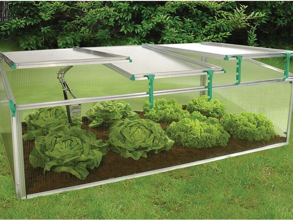 A cold frame with veggies inside and three vents opened differently.