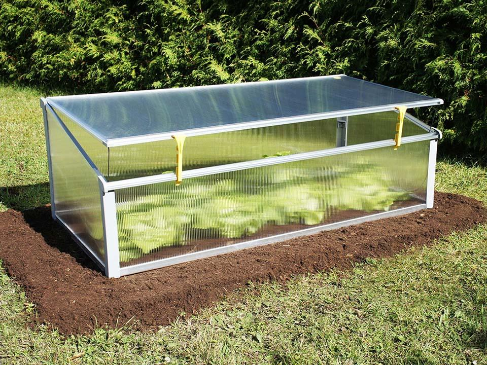 A slightly opened cold frame with plants inside