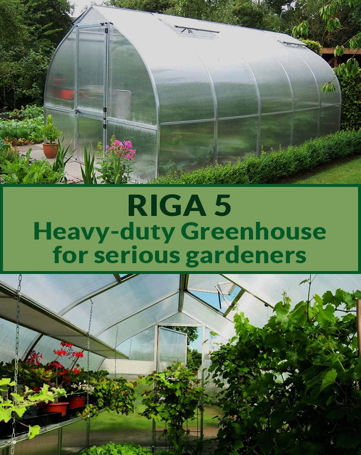 Riga 5 exterior view with closed door and interior view of Riga 5 with open roof vent and upper part of the door with the text saying Riga 5 Heavy-duty Greenhouse for serious gardeners