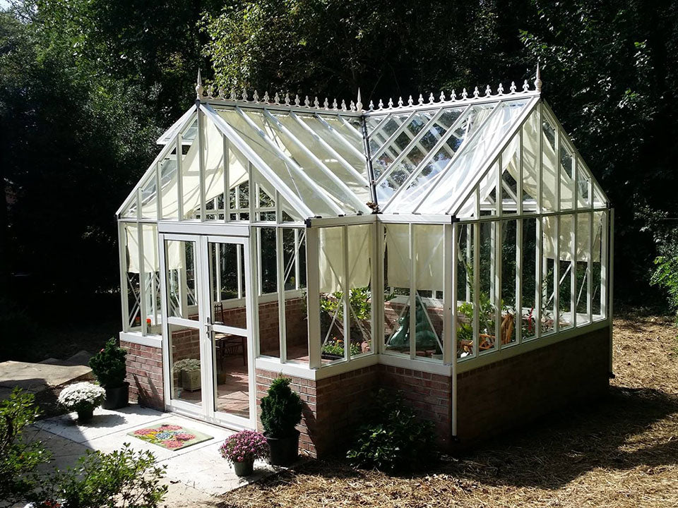 Royal Victorian Antique Orangerie on a stem wall